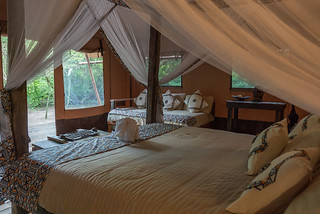 Safari Luxury Glamping Tent (3 pax) | Africa Safari Selous