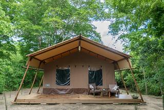 Safari Luxury Glamping Accommodation (3 pax) | Africa Safari Selous