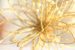 Sparkle... (Maria Godfrida) Tags: crazytuesday christmasdecoration glitter sparkle shine closeup macro bokeh golden light