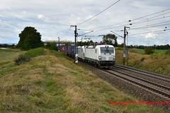 """ELL 193 291 + Rpool 193 810-9 """"Rurtalbahn Cargo"""" (Phil.Kn.) Tags: siemens vectron 193 ell rpool railpool rtb rtbc rurtalbahn bahn eisenbahn containerzug ostbahn"""