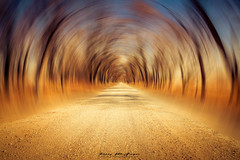 Time Tunnel (kmac1960) Tags: autumn autumncolors road blur fallcolors fall straight creativeart