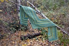 ... ein Strider (Sockenhummel) Tags: ausflug flickr flickrausflug wolle garn yarn wool schoppel strider strickmich stricken knitting martinabehm schal shawl scarf ecke tuch wolltuch sony rx100 m4