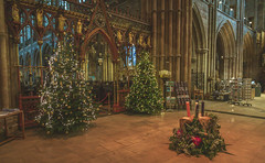 Christmas in Lichfield Cathedral. (Ian Emerson (Thanks for all the comments and faves) Tags: lichfield cathedral lichfieldcathedral staffordshire christmas decorations festive indoor architecture festival canon6d canon christmastree historical england