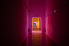 Doubles (Gabi Breitenbach) Tags: yourbestoftoday silhouette neonart corridor flickrfriday colours pink duplicate photographers fireextinguisher neon lights modern art modernart neonlights