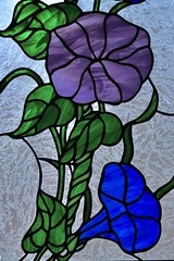 Morning Glory in Stained Glass (Sandra Mahle) Tags: morningglory stainedglass handcrafted art