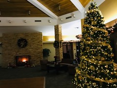 Enjoying the ambience of our recreation building (Trinimusic2008 -blessings) Tags: canada ontario toronto gratitude december2019 decorations fire fireplace christmastree christmas malibu mdrrecreationalcentre judymeikle trinimusic2008 joyeuxnoël2019 bonneannée2020 merrychristmas2019 happynewyear2020