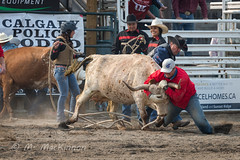 CPRA 36th Annual Rodeo (tallhuskymike) Tags: cpra rodeo event cowboy outdoors 2018 cochrane alberta action western fundraiser cowgirl