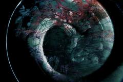 MMM Spiral (Carrie McGann) Tags: hmmm mosaicmontage monday mosaic montage spiral japanesemaple plate nikon nikond850 interesting