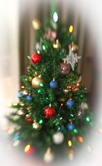 Christmas Tree (351/365) (johnstewartnz) Tags: crazytuesdaytheme crazytuesday christmasdecoration 351365 day351 onephotoaday oneaday onephotoaday2019 365project project365 canon canonapsh apsh eos 1dmarkiii 1d3 1dmark3 1d 1dmkiii 1diii canoneos1dmark3 canoneos1dmkiii 50mm lensbaby lensbabycomposer tripod