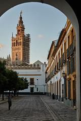 Patio de Banderas, Seville (AgarwalArun) Tags: sony a7m2 sonyilce7m2 landscape scenic nature views spain seville sevilla europe barriosantacruz patiodebanderas charming alleysofseville santacruzquarter
