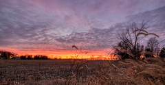 December Skies (1) (tquist24) Tags: hdr indiana nikon nikond5300 outdoor clouds colorful evening farm field geotagged outside rural sky sunset tree trees