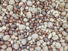 Nuts (explored) (jolynne_martinez) Tags: kansascity mo unitedstatesofamerica food nuts shells googlepixel explored explore