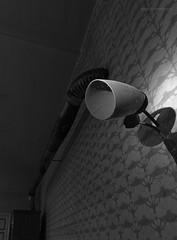Vergessene Welten (jensi311) Tags: abandoned abandonedphotography abandonedplaces abandonedworld canoneos forgottenplaces lostplace lostplaces lostplacesgermany lostworld marode rottenplaces urbanexploration urbanexplorer urbex urbexgermany urbexpeople urbexphotography urbexworld vergessen verlassen verlasseneorte verlasseneortedeutschland