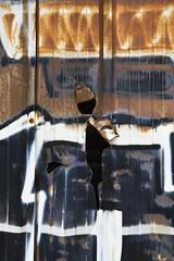 Rusty dancing (Gerard Hermand) Tags: 1904098099 gerardhermand france paris canon eos5dmarkii vitrysurseine palissade palisade rouille rust metal trou hole