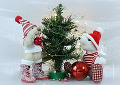 WAT VINDEN JULLIE VAN ONZE  KERSTLAARZEN ?🎅 DO YOU LIKE OUR NEW CHRISTMAS-BOOTS 🎅 (Anne-Miek Bibbe) Tags: crazytuesday happyteddybeartuesday christmas christmastree kerstmis kerstboom speelgoed toy spielzeug giocattoli juguetes bringuedos jouets bear teddybear beertje teddybeer beer speelgoedbeer nounours minibeer minibear decoration canoneos70d annemiekbibbe bibbe nederland 2019 tabletopphotography