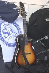 Mandolins, Bouzoukis, etc. [Necked Bowl Lutes] 25: Mandolin [A Style, Acoustic Electric] (of Brian Doran) (KM's Live Music shots) Tags: musicalinstrument hornbostelsachs chordophone acousticelectricmandolin mandolin briandoran thesalts thescoop