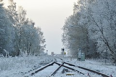 4/5 2019. (johnerlandaxelsson@gmail.com) Tags: gimo uppland sverige vinter natur landskap landscape johnaxelsson