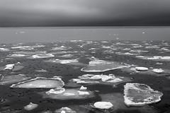 Icy Sea (Bernd Walz) Tags: sea seascape balticsea ice winter blackandwhite bnw bw monochrome fineart