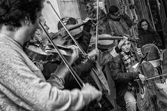 Con mucha cuerda (Egg2704) Tags: música músicos violín violines músicoscallejeros violonchelo cuartetodecuerda interpretacióncallejera chelo gonzalo barroco chelos músicabarroca violonchelos egg2704 blackandwhite byn blancoynegro monochrome monocromo bn blanconegro blackwhite