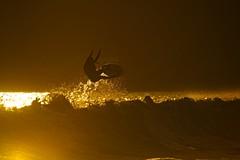 Aéreo no por do sol (mcvmjr1971) Tags: green nikon d800e lens sigma 150500 os niterói praia itacoatiara brasil beach sunset fim tarde sexta feira 13 dezembro 2019 mmoraes surf