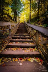 Stairway to autumn! (corineouellet) Tags: canonphoto canada woods forest forêt landscape nature fall fallingleaves leafs leaf leaves autumnal automne autumnvibes autumncolors autumn path stairway escaliers stair stairs