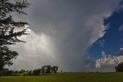 Developing Thunderstorm and Isolated Downpour (thefisch1) Tags: dveloping thunderstorm kansas pasture sky turbulence