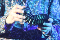 Accordions, Concertinas, etc. [Free Reed Instruments] 93: Concertina [Anglo Miniature - Dipper] (of Noel Hill) (KM's Live Music shots) Tags: musicalinstrument hornbostelsachs aerophone dipperconcertina miniatureconcertina angloconcertina concertina noelhill crownhotel