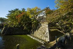 犬山城辰巳櫓台下石垣 (retrue) Tags: 日本 愛知県 犬山城