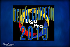 DESFÍN SPORTING CLUB CAMPEÓN 2019 LIGA PRO. MANTA - ECUADOR. (Alberto Cervantes Photography.) Tags: delfínsportingclub delfín sporting club delfínsportingclubcampeon2019 campeon2019 campeon 2019 manta ecuador republicadelecuador ecuadormanta mantaecuador beach playa mantacity city footballteam fulbol football equipo team ligapro2019 ligapro liga pro ligaproecuador indoor outdoor blur bluebackground blue blackbackground writing text texture sign retrato portrait luz light color colores colors brillo brightcolors bright photoart art creative photoborder reflejo reflection streetphotography photography history icono iconic fifa nightcolor colorlight dolphin sport champion flickrites abstract poster cartel afiche greetings graphicdesign digitalworld creativephotography