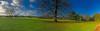 Parkland at Basildon Park