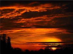 Today's sunset (Ostseetroll) Tags: deu deutschland geo:lat=5403891815 geo:lon=1068916204 geotagged pönitzamsee scharbeutz schleswigholstein sonnenuntergang sunset olympus em10markii