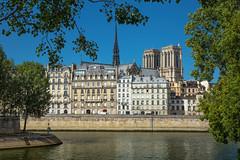 Paris (Faouic) Tags: france îledefrance paris îledelacité notredamedeparis quai cathédrale
