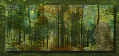 The Grinch in the Forest (franzisko hauser) Tags: christmas forest grinch philosophy nature nikond5300 photography pano processing filter texture composing framed
