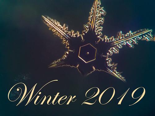 Schneeflocke mit Text Winter 2019