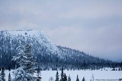 Mountain! (petergranström) Tags: approved mountain berg woods skog trees träd scarp stup snow snö lake sjö