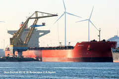 Sun Orchid (andreasspoerri) Tags: alltypesoftransport bulker imo9468401 panama rotterdam stcorchid stxjinhae sunorchid transport