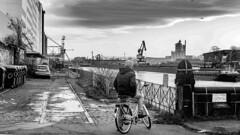 DEUTZER HAFEN (B. Hanner-Schmitz / W. Schmitz) Tags: bnw schwarzweis monochrome noiretblanc street hafen köln cologne harbour rhein rhine