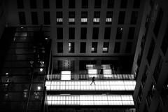 tightrope (grizzleur) Tags: pov birdseye humanelement small dark highcontrast lowkey hotel lobby interconti tightrope light stride olylove olympus omd olympusomdem5mkii panasonic25mmf14 street candid streetphotography omdstreetphotography geometry