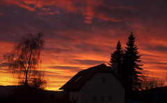 Morgenrot (Mariandl48) Tags: morgenrot rotermorgenhimmel haus baum sommersgut wenigzell steiermark austria