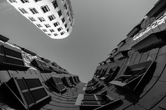 Couple (frankdorgathen) Tags: alpha6000 sony1018mm monochrome blackandwhite schwarzweiss schwarzweis perspektive perspective urban rheinland düsseldorf medienhafen mediaharbour gebäude building architecture architektur bauten gehry