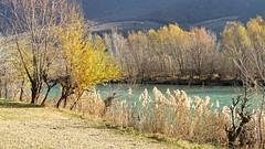 Adige (ab.130722jvkz) Tags: italy veneto trentino adigevalley valleys rivers autumn