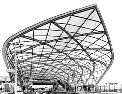 Monocrome Interpretation (petra.foto busy busy busy) Tags: architektur bahnhof sbahn hamburg bahnsteig germany outside neubau eröffnung fotopetra canon eosrp perspektive glaskonstruktion monocrom schwarz weis schwarzweis