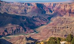 Grand Canyon & the Colorado River (nebulous 1) Tags: grandcanyon grandcanyonnp grandcanyonnationalpark coloradoriver canyon river water gorge hole geology historic immense vast view scene landscape nebulous1 nikon glene erosion forcesofnature desertview