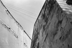 Lviv (coastal driver) Tags: film analog ukraine пленка украина україна плівка analogue filmphotography analogphotography bw d76 astrum 100 astrum100 smenasymbol smena чб
