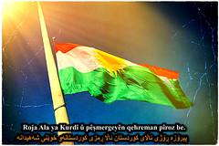 December 17th is Kurdistan Flag Day (Kurdistan Photo كوردستان) Tags: nature کورد kurdistan کوردستان land democratic party koerdistan kurdistani kurdistanê zagros zoregva zazaki zaxo zindî azadî azmar xebat xaneqînê christianity cegerxwin van love mahabad music arbil democracy freedom genocide herêmakurdistanê hawler hewler hewlêr halabja herêma judaism jerusalem kurdistan4all lalish qamishli qamislo qamishlî qasimlo war erbil efrînê refugee revolution rojava referendum yezidism yazidis yârsânism unhcr peshmerga peshmerge flickrsbest fantastic kazaxîstanê yȇrevan dimdim tîgran emerîkê ermenîstan فیلمستان اورمیه efrîn پێشمەرگە hsd aramco