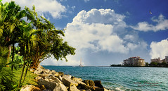 Looking from the shore of the Government Cut (Aglez the city guy ☺) Tags: miamibeach southpoint palmtrees coconuttree grass seashore seascape blue sailboat clouds outdoors waterways walkingaround urbanexploration