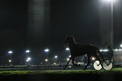 I'm poor lonesome jockey... (pascal445) Tags: cheval chevaux hippodrome night course horses