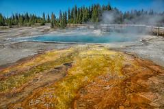 Beautiful Bacteria (Phil's Pixels) Tags: blackpool westthumbgeyserbasin hotpool thermal cyanobacteria thermophilicbacteria yellowstone