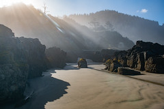 Oregon Coast (jeff's pixels) Tags: yachats oregon coast ocean seastack landscape nature bird bus car train plane explore