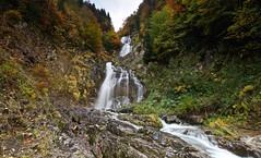 Cascada de Bujaruelo (explore 285) (pascual 53) Tags: largaexposicion bujaruelo aragon huesca canon eos5ds 1635mm cascada pirineos otoño